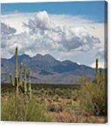 Four Peaks In May Canvas Print