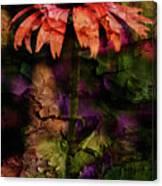 Fragmented Echinacea Canvas Print