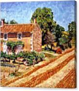 Fresh Cut Hay Provence Canvas Print