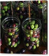 Fresh Harvested Olives And Tunas Canvas Print