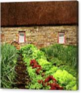 Garden Farm Canvas Print