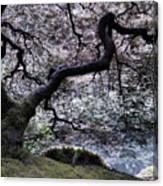 Garden View In Blue Canvas Print