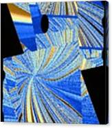 Geometric Abstract 2 Canvas Print