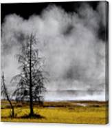 Geysers And Steam Rising In Yellowstone National Park Canvas Print