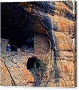 Gila Cliff Dwellings National Monument Canvas Print
