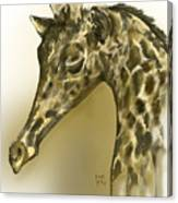 Giraffe Contemplation Canvas Print