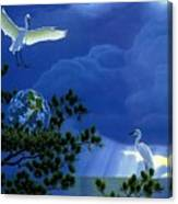 Giver Of Life 2 William Schimmel Canvas Print