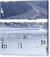 Glacier Bay Alaska Canvas Print