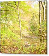 Glimpse Of A Stream In Autumn Canvas Print