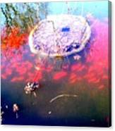 Gold Fish Pond Canvas Print