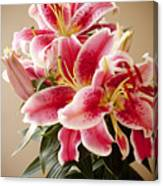 Graceful Lily Series 12 Canvas Print