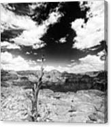 Grand Canyon Landscape Canvas Print