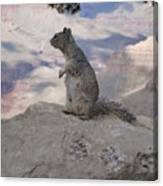 Grand Canyon Squirrel Canvas Print