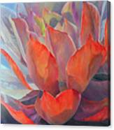 Grand Succulent Canvas Print