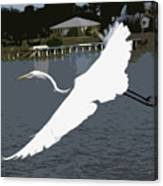 Great Egret At Melbourne Beach Canvas Print