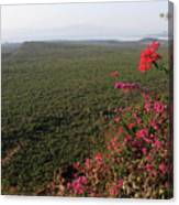 Great Rift Valley Ethiopia Canvas Print