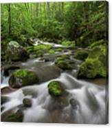 Great Smoky Mountains Roaring Fork Canvas Print