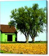 Green Barn  Canvas Print