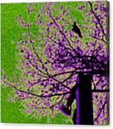 Green Light Night Flight Canvas Print