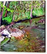 Greesy Creek Canvas Print