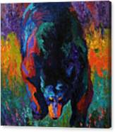 Grounded - Black Bear Canvas Print