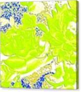 Harmony 31 Canvas Print