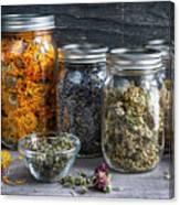 Herbs In Jars Canvas Print