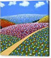 Hills Of Flowers Canvas Print