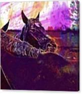 Horses Harmony For Two Animal World  Canvas Print