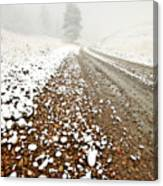 Ice Fog In Cypress Hills Provincial Park Of Saskatchewan Canvas Print