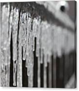 Icicles At Attention Canvas Print