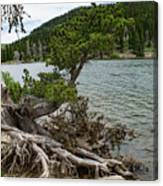 Idaho Lake Canvas Print
