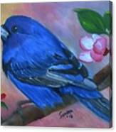 Indigo Bunting Canvas Print