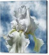 Iris In The Clouds Canvas Print