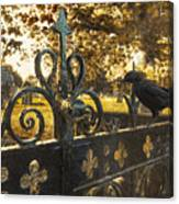 Jackdaw On Church Gates Canvas Print