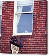 Jonesborough Tennessee - Window Over The Shop Canvas Print