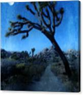 Joshua Trees At Night Canvas Print