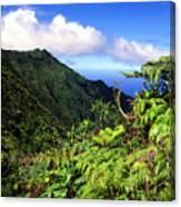 Koolau Summit Trail Canvas Print