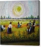 La Risaia Canvas Print