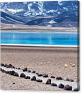 Lake Miscanti In Chile Canvas Print
