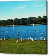 Lake Myers. Canvas Print