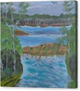 Lake Okahumpka Park Canvas Print