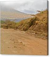 Landscape Near Marsabit, Kenya Canvas Print