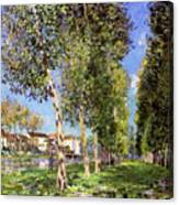 Lane Of Poplars At Moret Canvas Print