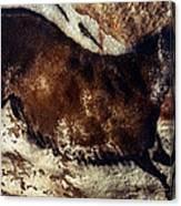Lascaux: Horse Canvas Print
