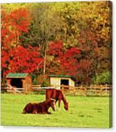 Lazy Autumn Day Canvas Print
