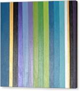 Linea Canvas Print