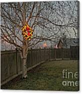 Lit Christmas Wreath Hanging In Tree Canvas Print