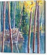 Little Mountain Beaver Pond 04 Canvas Print