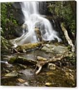 Log Hollow Falls North Carolina Canvas Print